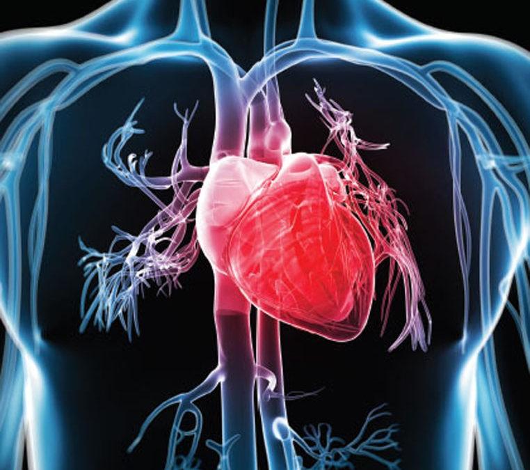 prevención de paradas cardíacas