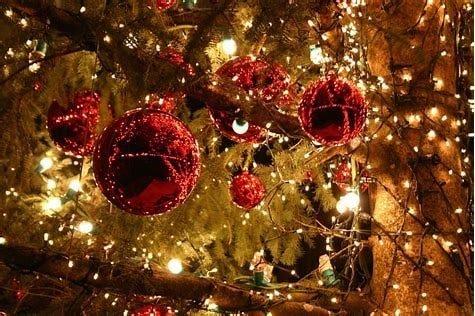 navidad y prevención