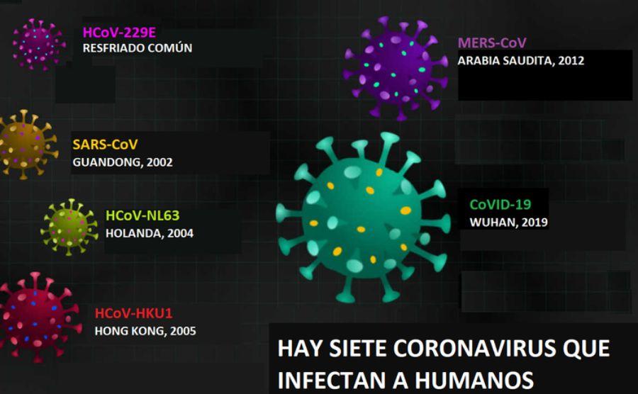 coronavirus que infectan a humanos